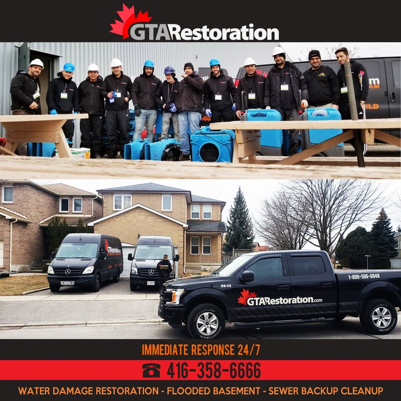 GTA Restoration Professional Team